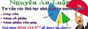 Cách hình thức nhà đầu tư nước ngoài góp vốn công ty Việt Nam